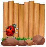 A bug on a rock near the empty signboard Royalty Free Stock Image
