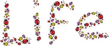 Bug's life word Stock Image