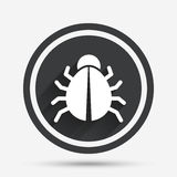Bug sign icon. Virus symbol. Software bug error. Royalty Free Stock Image