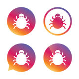 Bug sign icon. Virus symbol. Software bug error. Disinfection. Gradient buttons with flat icon. Speech bubble sign. Vector Stock Image