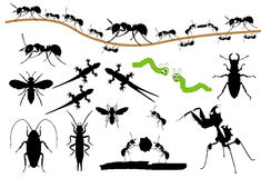 Bug silhouettes royalty free illustration