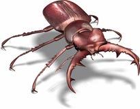 bug silna Zdjęcia Royalty Free