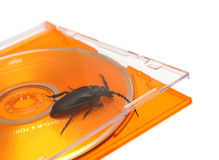 Bug in software concept Stock Image