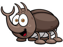 Bug Stock Photography