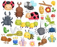 Bug Vector Set. A bug vector set with many content vector illustration