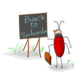 Bug writes on a board. This is a bug writes on a board. It is a study theme Royalty Free Stock Images