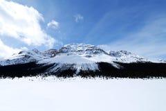 Buga passerandet i vinter, kanadensiska steniga berg, Kanada Royaltyfri Fotografi