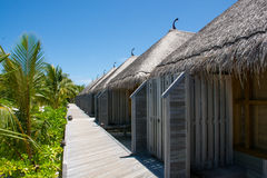 Bungalos at the topical resort at Maldives. Bungalos at the topical resort Stock Photography