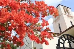 Buganvília cor-de-rosa com a igreja no fundo fotos de stock