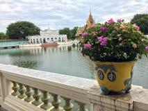 Buganvília no vaso de flores, a residência real da Thiphaya-arte de Aisawan, o salão principal do Pa do golpe em Royal Palace imagem de stock royalty free