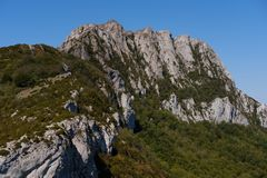 Bugarach peak in the Pyrenees. Bugarach peak with forest in the french Pyrenees stock photography