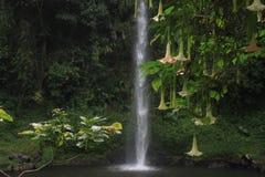 Bugbrug vattenfall Arkivbilder