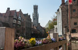 Bruges architecture - old tower. The flowers on the fence with the old tower on the background Royalty Free Stock Photography