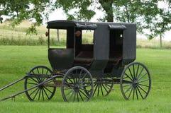 Buggy de Amish   Imagens de Stock