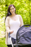 Buggy outdoor Stock Photography
