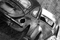 buggy punch Στοκ Φωτογραφία