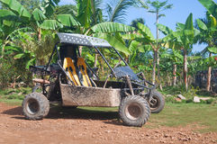 Buggy on the track of Tropical Stock Photos
