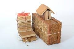 Bugia dei vecchi libri accanto alla vecchia valigia Immagini Stock Libere da Diritti