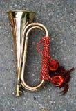 bugle Royaltyfri Fotografi
