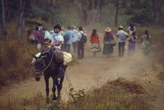 Bugle Panamá indígena de Ngabe Foto de archivo libre de regalías
