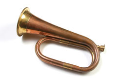 Bugler isolato sopra bianco Fotografia Stock