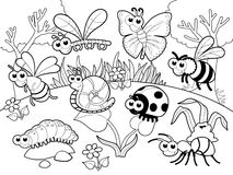 Free Bugs + 1 Snail With Background In Blach And White. Royalty Free Stock Image - 36781906