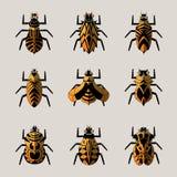 bugs stock de ilustración