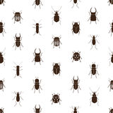 Bugs And Beetles Simple Seamless Pattern Stock Image