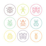 Bugs in circles. Collection of bug line vector icons in circles - each one  on white background. Thin line symbols of different insects Stock Images