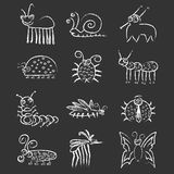 Bugs And Insects Icon Collection Set Stock Images