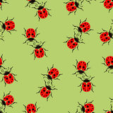 Bugs ladybug seamless pattern, insects vector background. For fabric design, wallpaper, wrapping, print, paper Royalty Free Stock Photography