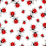 Bugs ladybug seamless pattern, insects vector background. For fabric design, wallpaper, wrapping, print, paper Royalty Free Stock Photos