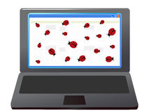 Bugs in the laptop Stock Image