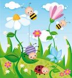 bugs livstid Royaltyfri Foto