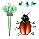 Bugs and poppy Stock Images