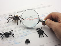 Bugs in the source code Stock Images