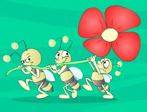 Bugs Team. With a flower Royalty Free Stock Images