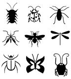 Bugs vector. Collection of different insects Stock Photography