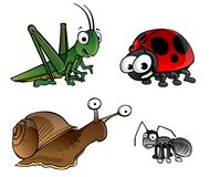 Bugs on a white background stock illustration