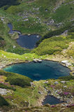 Buhaescu jezior parka narodowego Rodnei góry Fotografia Royalty Free