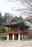 Buhdist Temple, South Korea Stock Photography