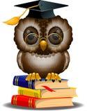 Buho sabio en una pila de libros Imágenes de archivo libres de regalías