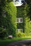 Buiding verde fotografia stock libera da diritti