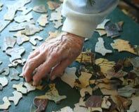 buidling руки озадачивают старший Стоковые Изображения