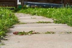Buig de weg van betontegels op een Zonnige dag stock foto