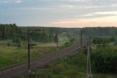 Buigende spoorweg bij dageraad in een mooi bos stock foto's