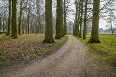 Buigende weg in een park Royalty-vrije Stock Afbeelding