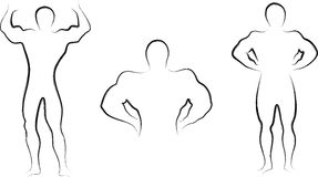 Build body. Hand drawn and artistic stock illustration