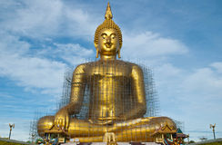 Build the Buddha Stock Photography