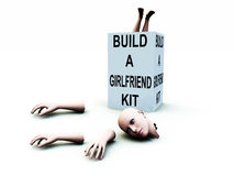 Build A Girlfriend kit 42. A abstract conceptual image of a kit to build a girlfriend Royalty Free Stock Photography